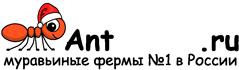Муравьиные фермы AntFarms.ru - Тюмень